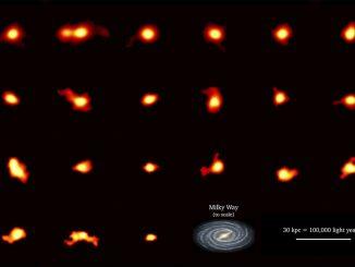 Abondance de galaxies en rotation dans l'Univers jeune