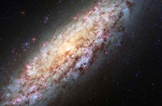 galaxie NGC 6503