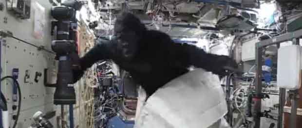 Scott Kelly en gorille dans l'ISS