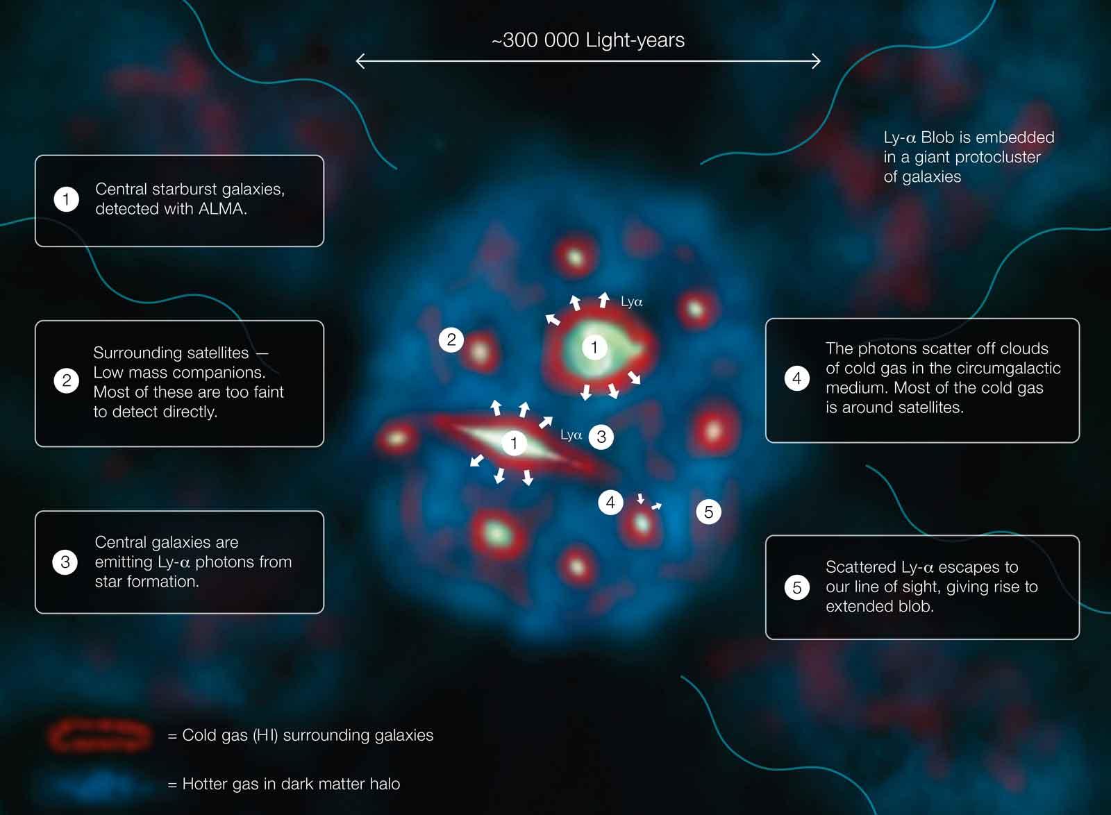 nfographie du fonctionnement d'un Globule Lyman-alpha
