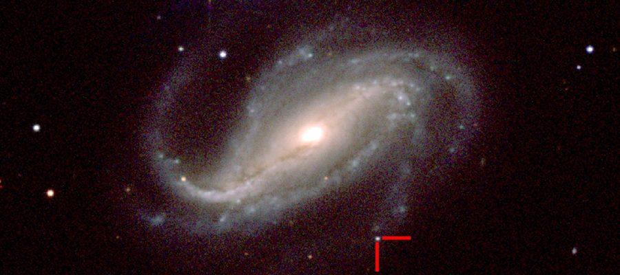un astronome amateur