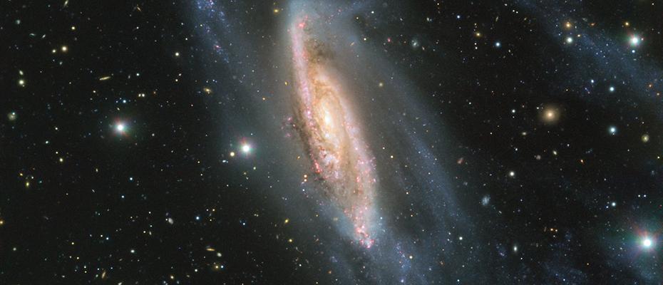 NGC 3981