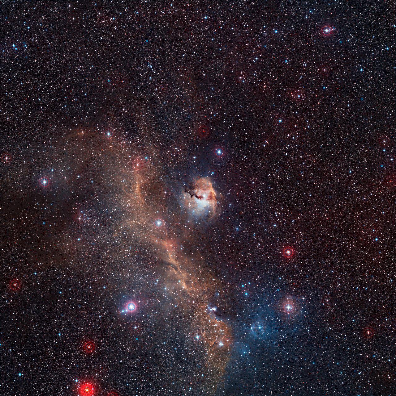 Image à grand champ de la nébuleuse de la Mouette entière (IC 2177)