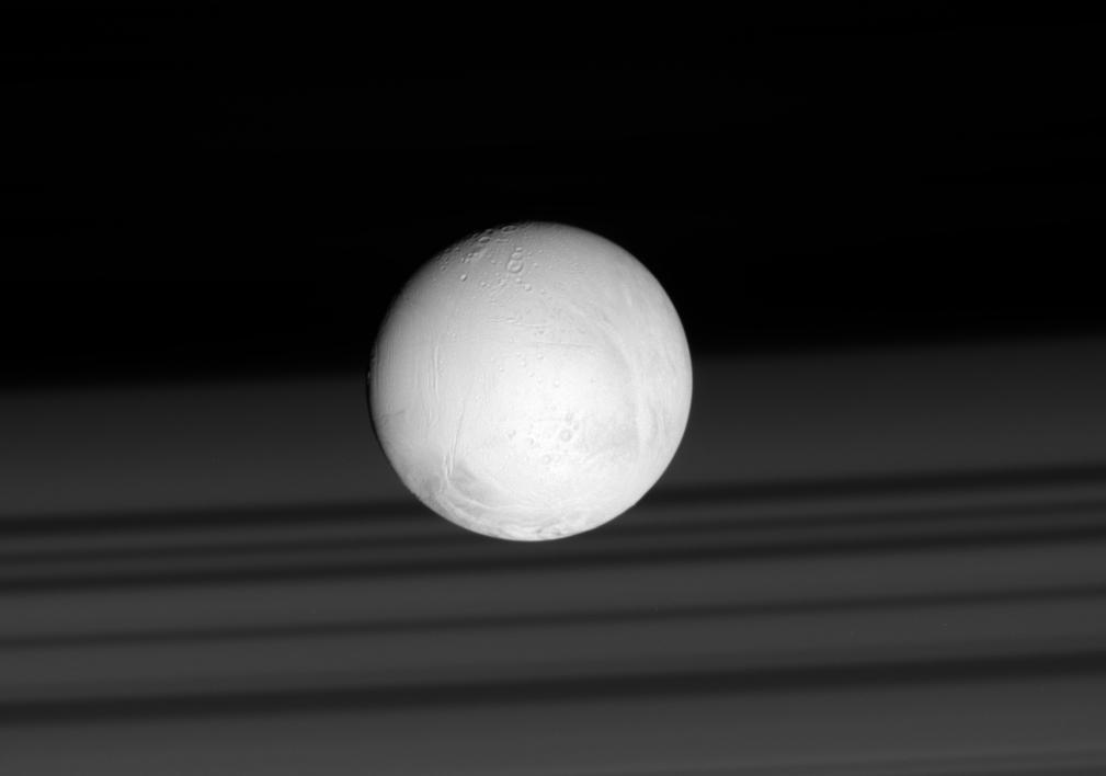 Des précurseurs d'acides aminés dans les panaches d'Encelade